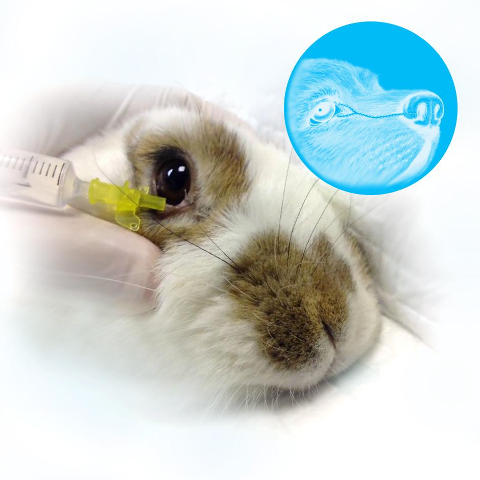 Промывание носослезных каналов